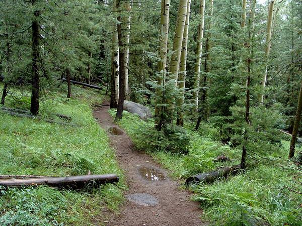 Kachina Trail, 8-1-10